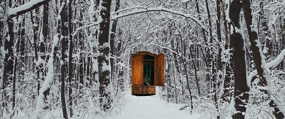 Wardrobe to Narnia in the snowy forest