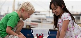 Kids Crabbing on Poole Quay |