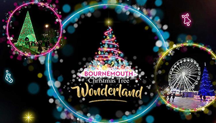 Christmas Tree Wonderland Bournemouth Coastal Bid.Bournemouth Christmas Tree Wonderland Poole