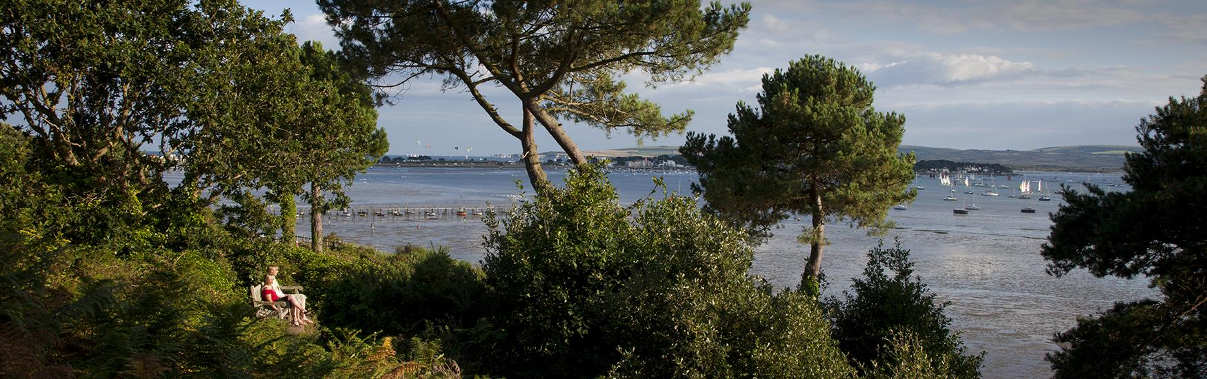Explore the area, discover Poole's treasures