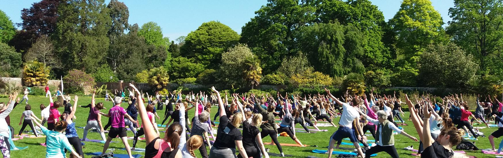 People doing yoga at Upton Country Park