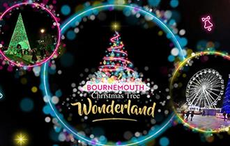 Christmas Tree Wonderland homepage image