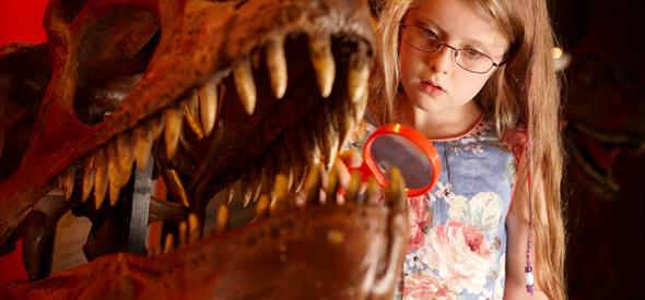 Girl investigating the dinosaur bones with a magnifying glass at the museum