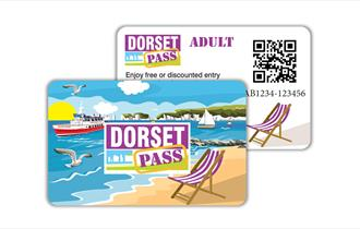 Front and back design of the pass card.