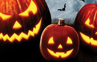 Halloween Half Term at Shire Hall