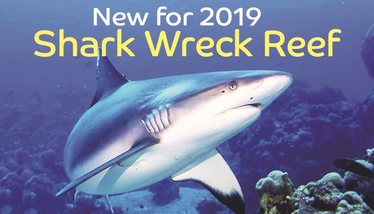 Shark Wreck Reef new for 2019