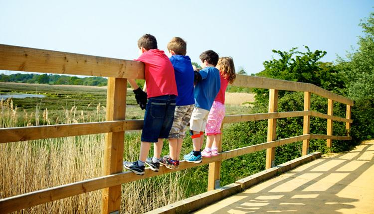 Group of children standing on the fence looking at the views from the park